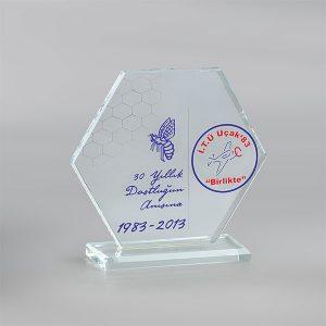 Kristal Plaket PL17023