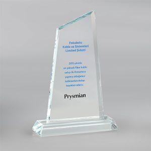 Kristal Plaket PL17024