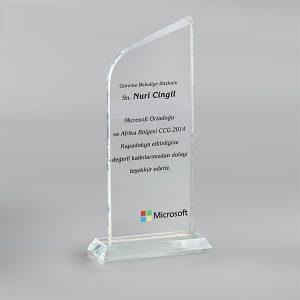 Kristal Plaket PL17029